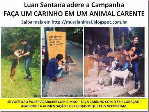 Luan Santana adere a Campanha