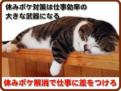 20140819_200.jpg