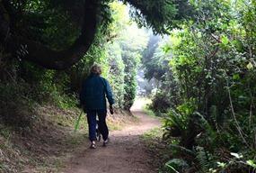 South Beach Trail