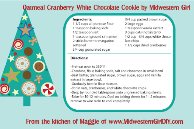 Oatmeal Cranberry White Chocolate Cookie by Midwestern Girl