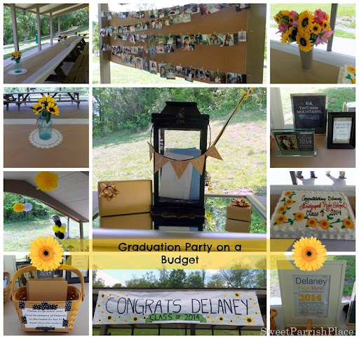 Diy Graduation Party On A Budget