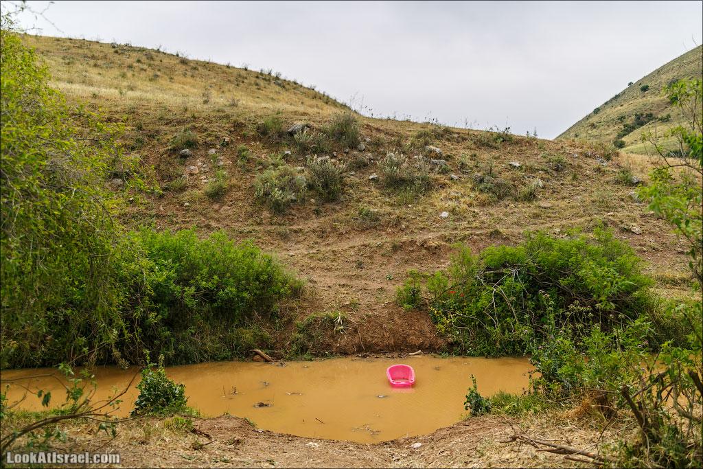 LookAtIsrael.com: Фото-блог о путешествиях по Израилю. Тель Авив, Иерусалим, Хайфа Во время переправы случилась трагедия! ТРАГЕДИЯ!В этой точке мы свернули и зашли в каньон Базелет, по которому бежит ручей Тавор