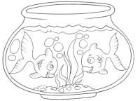 Pecera Con Peces Para Colorear Dibujos De Peceras Con
