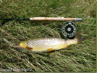 20120424_Norfork River Edited_02_thumb[5]