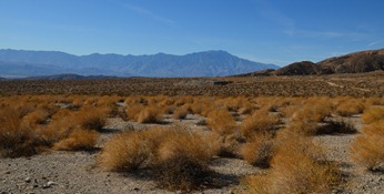 That is Mt San Jacinto in the west toward Desert Hot Springs