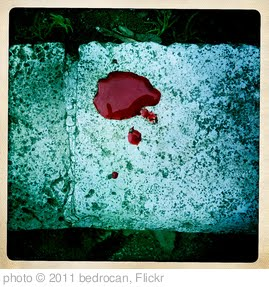 'blood' photo (c) 2011, bedrocan - license: http://creativecommons.org/licenses/by/2.0/