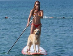 lg_Yoga-Paddle-Boarding-in-Miami