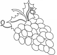 Dibujos de racimos de uvas para colorear - Imagui