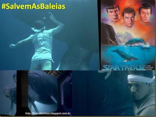 baleias-star_trek2