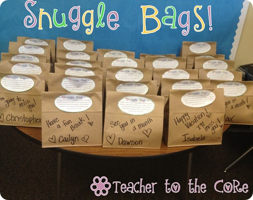 Teacher To The Core Snuggle Bags