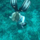 Snorkeling Bunaken (2).jpg