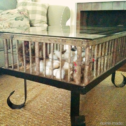 home made chicken coop coffee table
