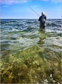 bass fishing Ireland