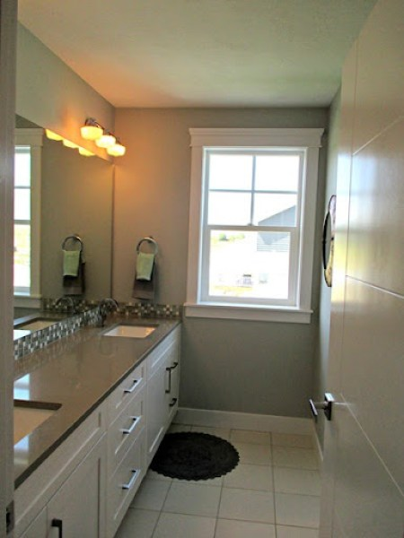 Misty by Sherwin Williams - bathroom paint color