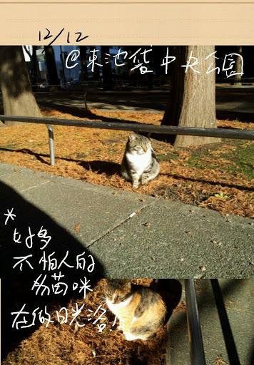 S Memo_80.jpg