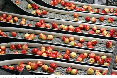 'Packing SweeTango apples' photo (c) 2010, Stemilt Growers - license: http://creativecommons.org/licenses/by/2.0/