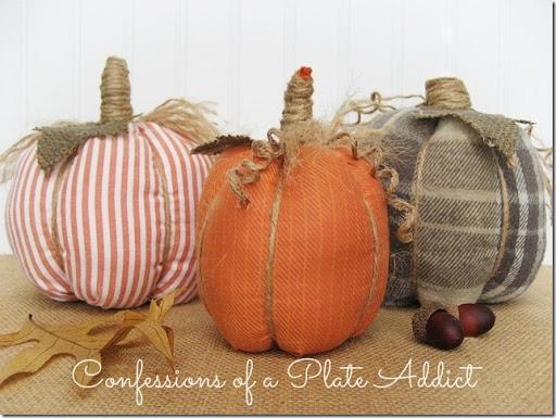 CONFESSIONS OF A PLATE ADDICT No-Sew Shirt Pumpkins