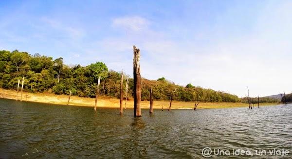 Kerala-Thekkady-Periyar-National-Park-unaideaunviaje.com-KeralaBlogExpress-16.jpg