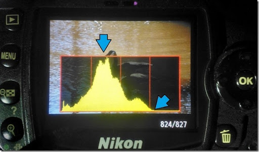 Use the histogram to improve your photos