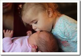 madelynn newborn pics 028
