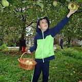 1. La cules de mere.JPG