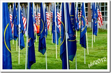 DSC_3214Utah-flags