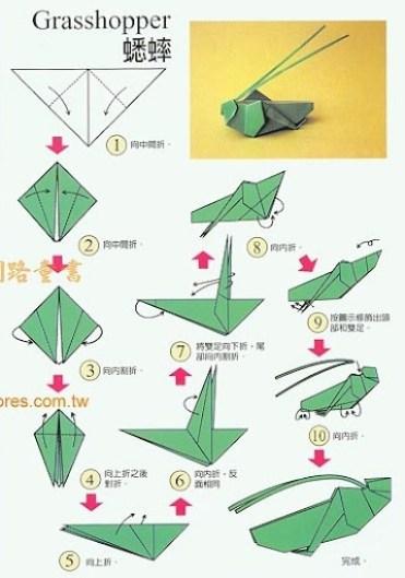 origami_gafanhoto