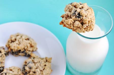 oatmeal raisin 049