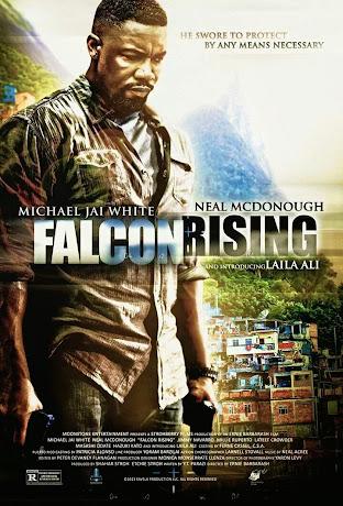 falcon rising full movie online free
