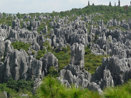Image result for Stone Forest, China