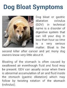 Dog Symptoms Cure screenshot 3