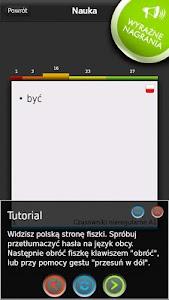 FISZKI Angielski Czasowniki C screenshot 1