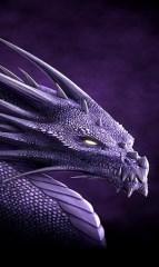 Télécharger Dragon Live Wallpapers Pour Pc Gratuit Windows Et Mac