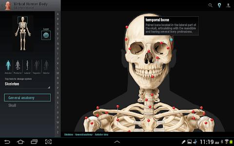 Virtual Human Body screenshot 7