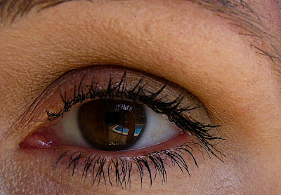 Clinique matte eyeshadows for fall 2008