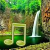 Jungle Sounds - Nature Sounds