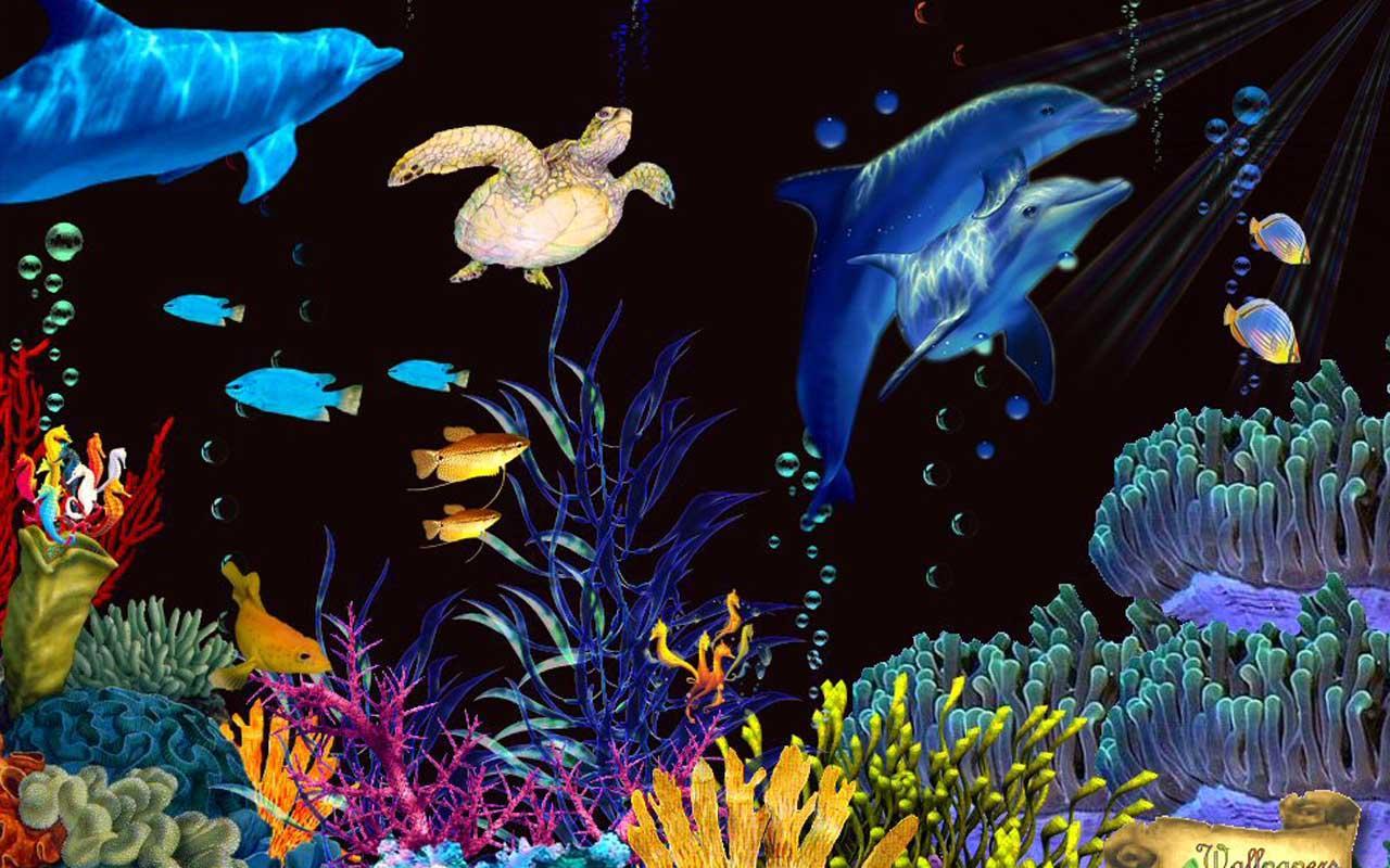 Fish Tank 3d Wallpaper Download Download The 5d Aquarium Live Wallpaper Android Apps On