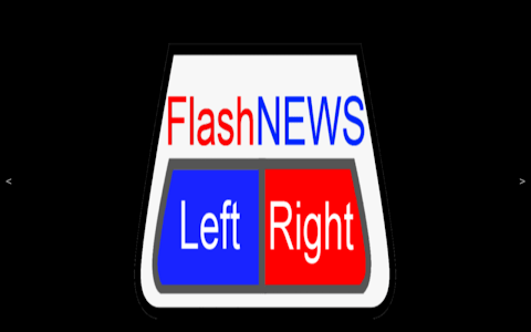 FlashNews: LeftRight screenshot 4