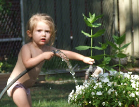 My favorite thing in the back yard...the water spicket.