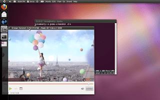 Compiz Unity Natty screenshot
