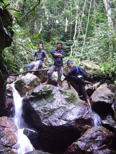 anak hutan