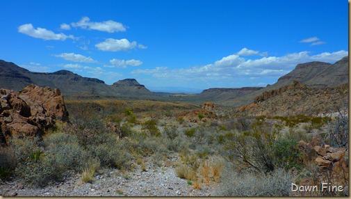 Big Bend Ranch State park_043