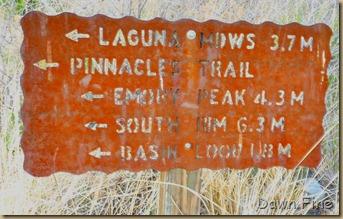 South rim hike,Big bend_001