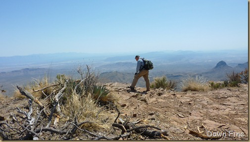 South rim hike,Big bend_029