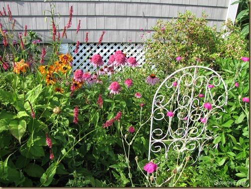 loris garden_20090718_001