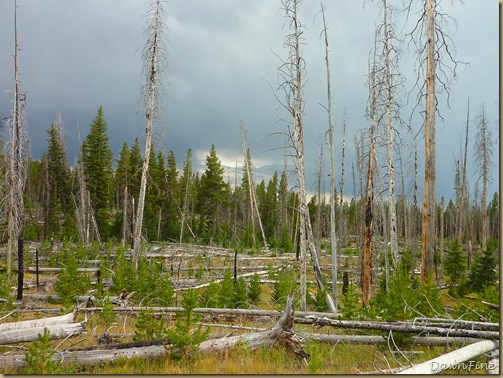 Yellowstone dawns_20090906_055