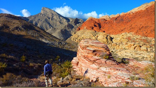 calico hike w David_009