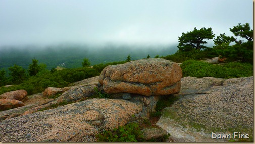 Gorham mt hike_070