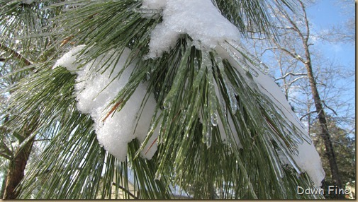 snow and ice_035
