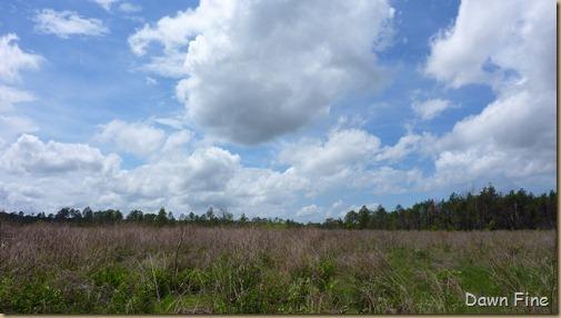 Clouds near Cassins Sp_001